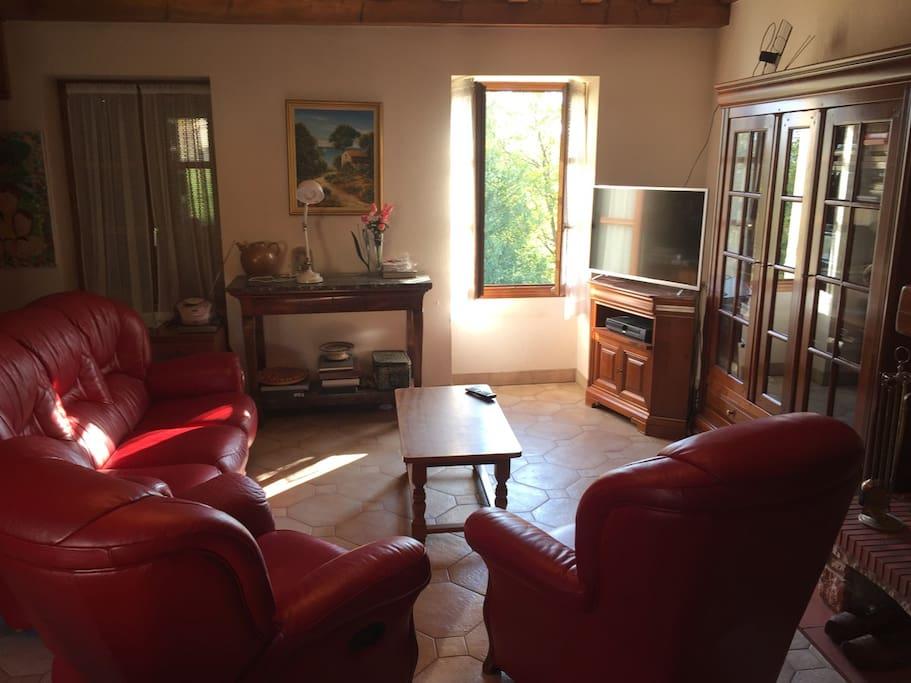 grand salon avec cheminée