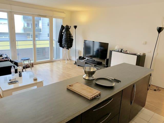 Salon - Cuisine / Living room - Kitchen