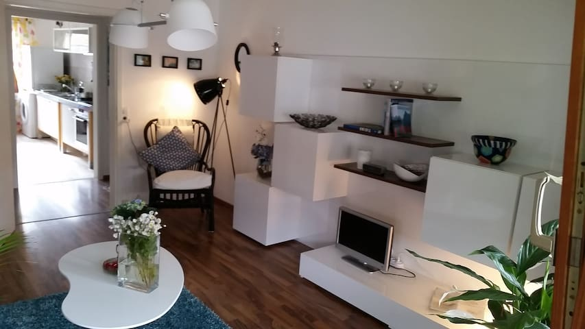 cosy and stylish three room apartment close Basel - Гренцах-Вилен