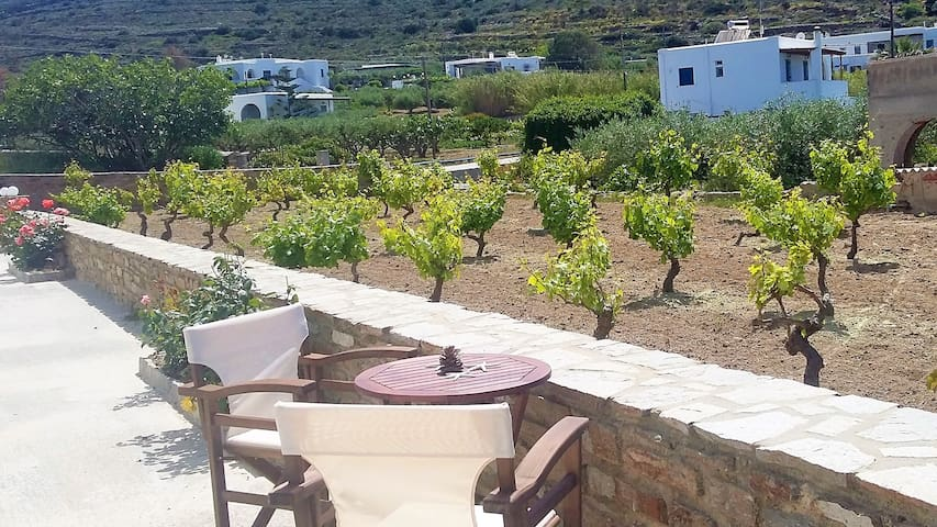 Countryside apartment -  Andrielos2