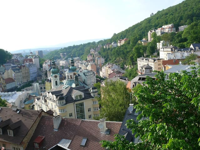 Magical view will amaze you! Room for 3 people - Karlovy Vary - Loft