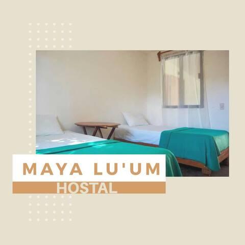 Hostal Maya Lu'um en Xpujil, Calakmul