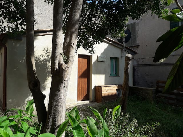 Tinny House, incantevole giardino, pet friendly