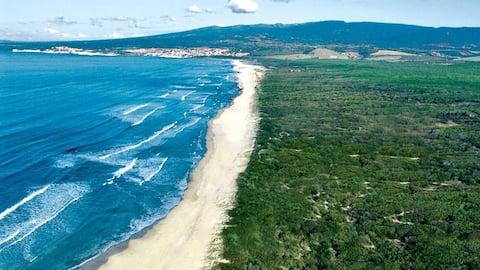 Villetta in pineta Golf Is Arenas, vicina al mare