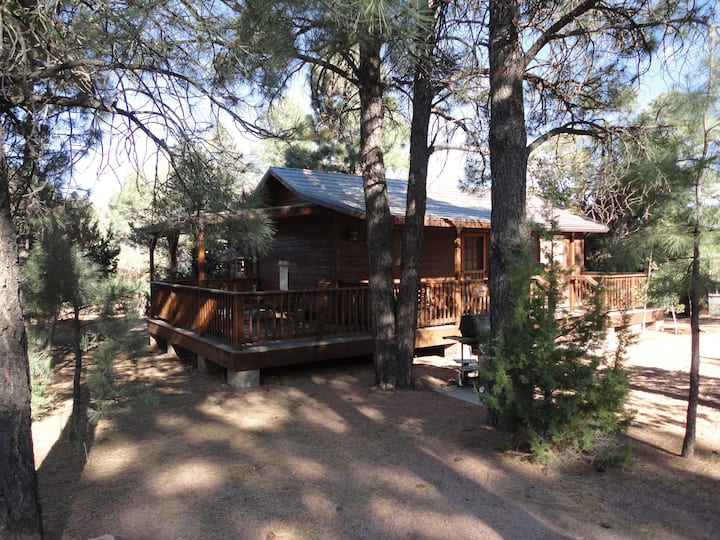 Charming 1 bedroom mountain cabin with Hot tub