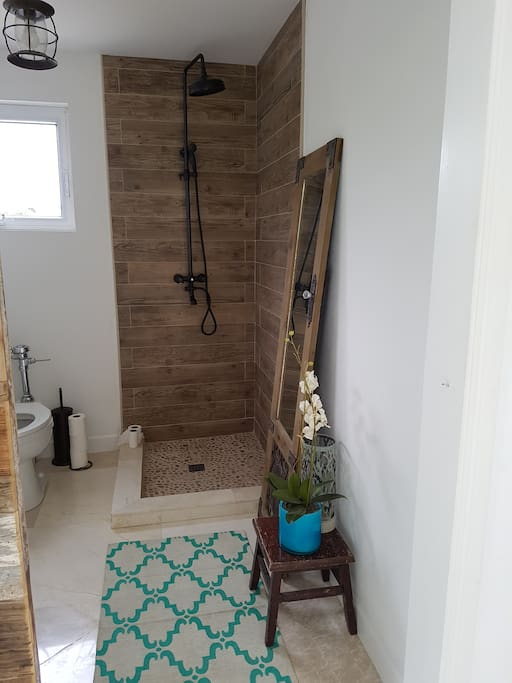 Downstairs restroom and shower
