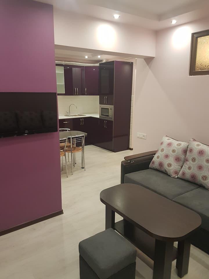 !!Люкс апартаменты для молодых в сердце Еревана!!!