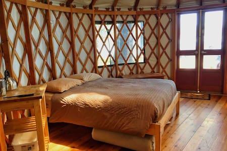 12. Small Ocean Front Yurt