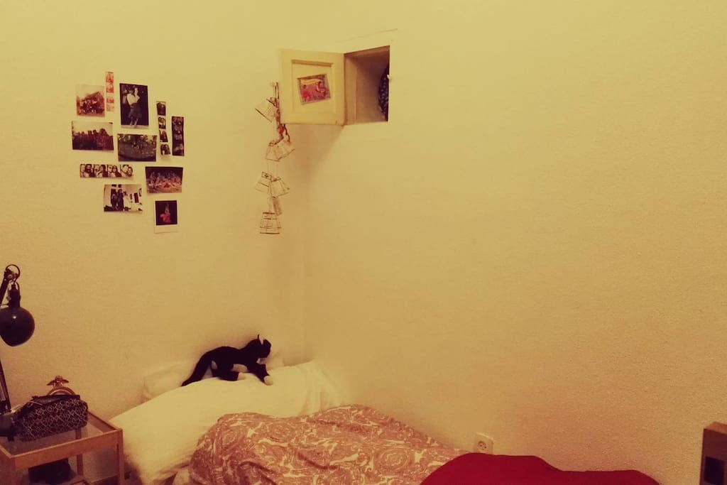 la habitacion / the room