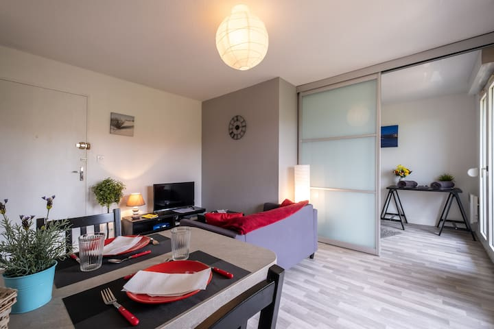Appartement Cosy - Aéroport Toulouse Blagnac