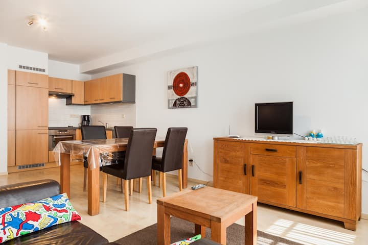 A comfortable  apartment near Europe area .
