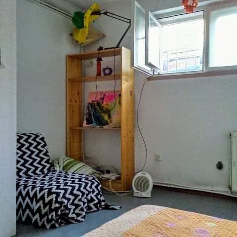 Cozy pet friendly room
