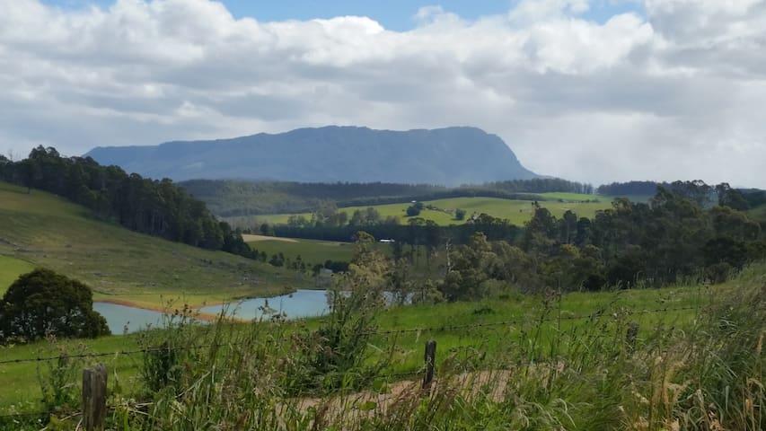 Walking trail views