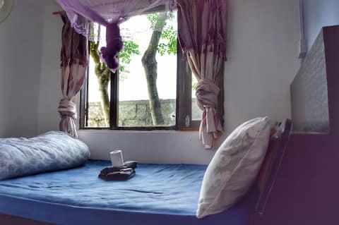 Garden Guesthouse - COZY HOME. Sauraha