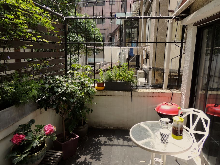 View of terrace from the kitchen on a sunny morning