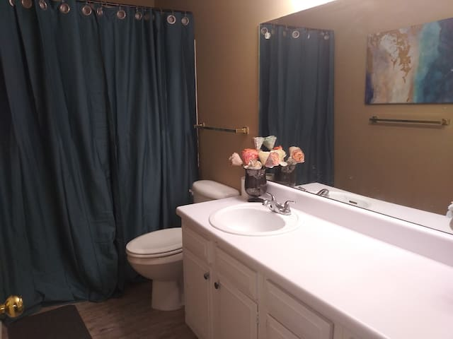 This is the private bathroom that you will be using  it has a full bath and I keep it extremely clean!