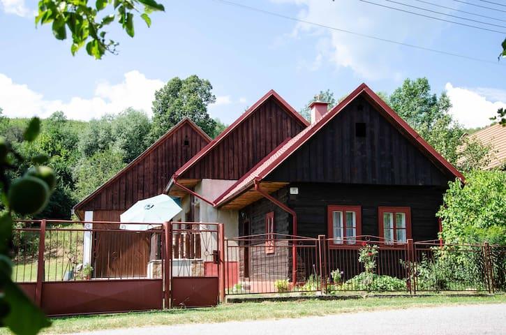 Charming Cottage in Prosiek