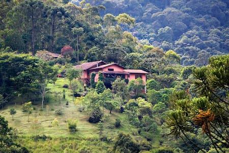 No Mocambo do Jacaré: Muita vista sem dar na vista