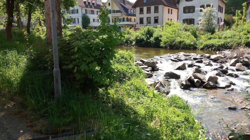 ItalSchwarzwald 2:calore italiano+bellezza tedesca