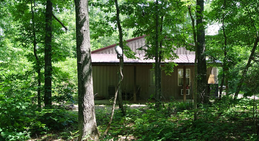 Collier Bluff Cabin in Pine Hollow