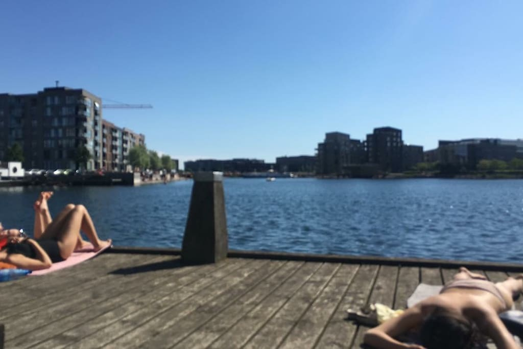 Dock with opportunity to go for a swim