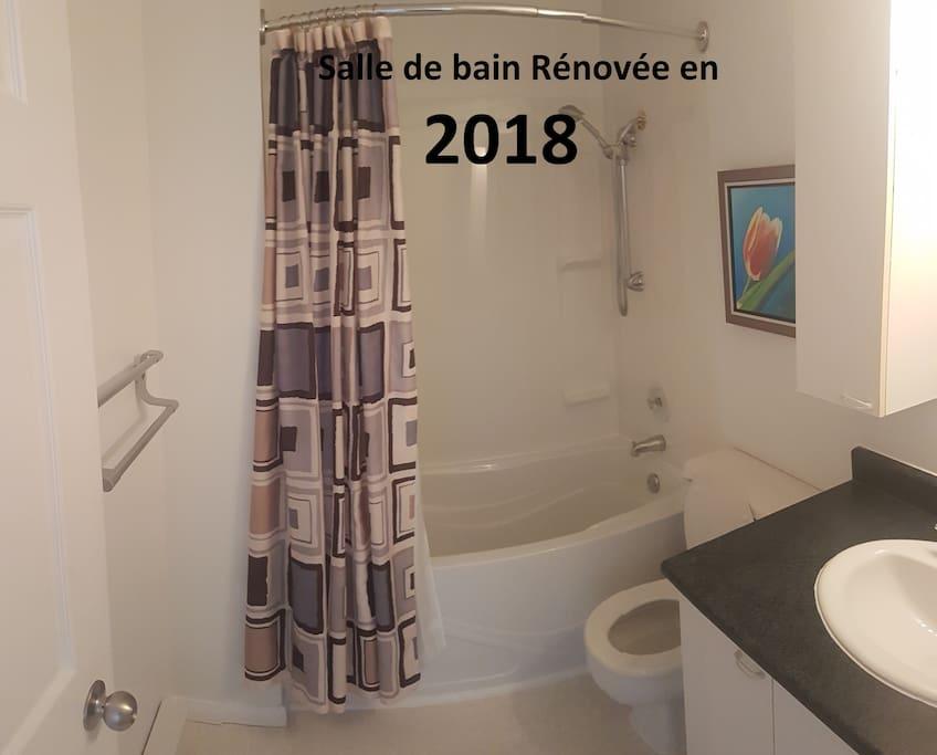 Propreté des lieux impeccable. La salle de bain a été rénovée en 2018