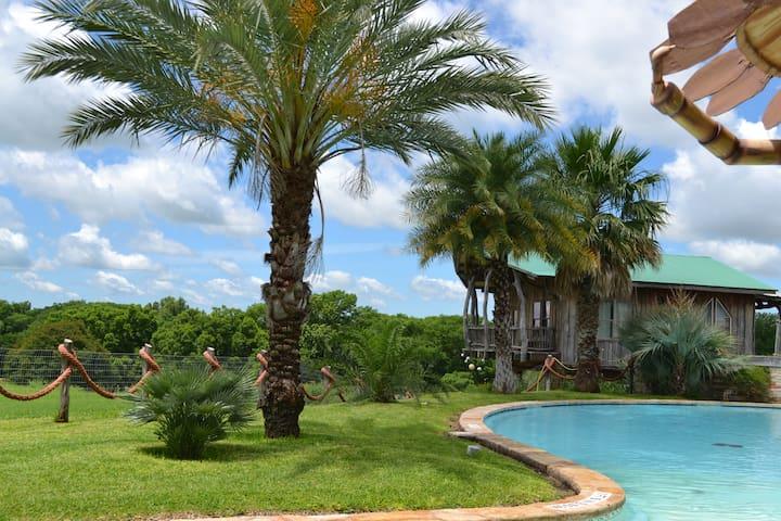 Las Palmas Tree Haus - Cloud Lane