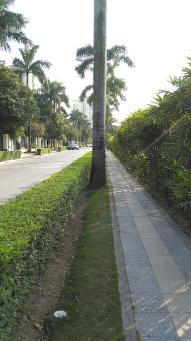 Green, quite and safe. Residential area.