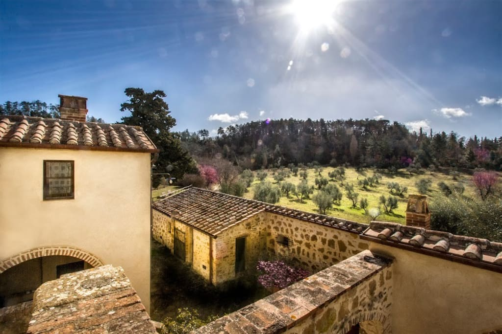 Cavarciano Apt 5 - Panoramic view