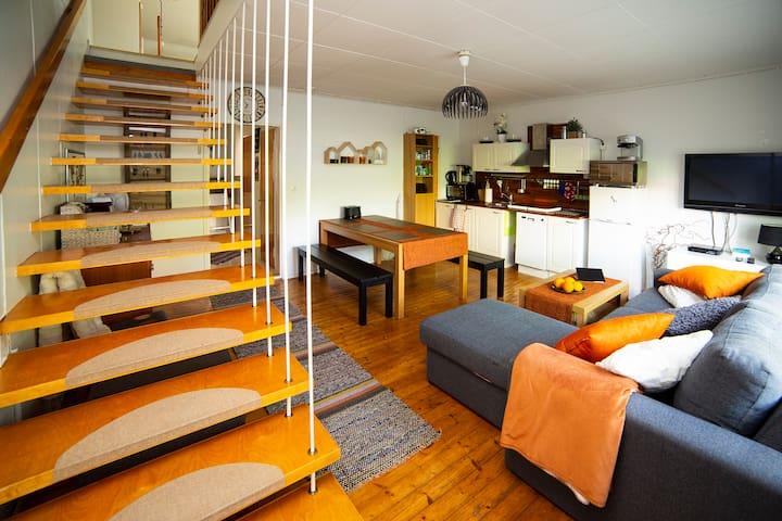 Olohuone ja keittiö. Vuodesohva. Taittopatja. Chromecast TV, AC, WIFI, WIFI-tabletti. Living room & kitchen. Sleep sofa.