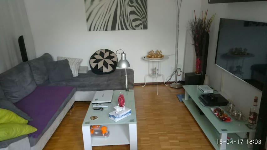 Un posto divano a Lugano - Lugano  - Apartamento