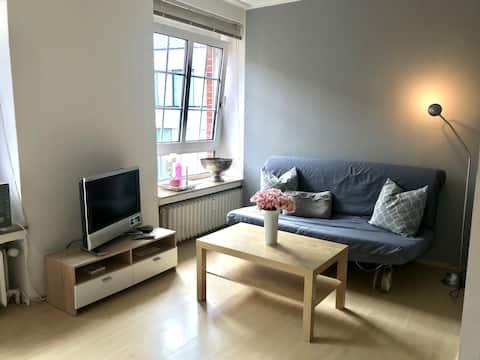 Gemütliche Wohnung im Herzen Münsters Innenstadt