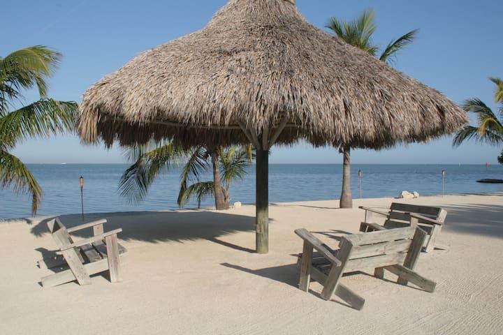 Islamorada-Ocean front Property - Islamorada - Bed & Breakfast