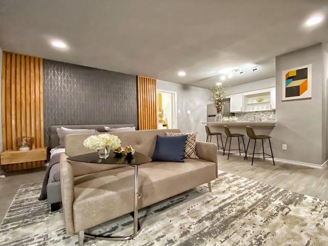 Urban Luxury Studio In Montrose Area