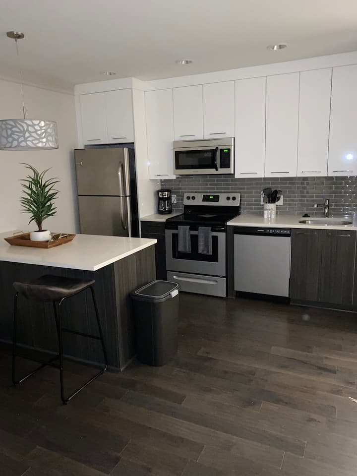 Upscale 2 Bedroom Downtown Indy
