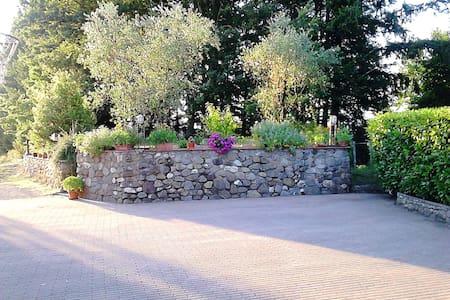 Piccolo agriturismo con meleto in Lunigiana - San Terenzo Monti