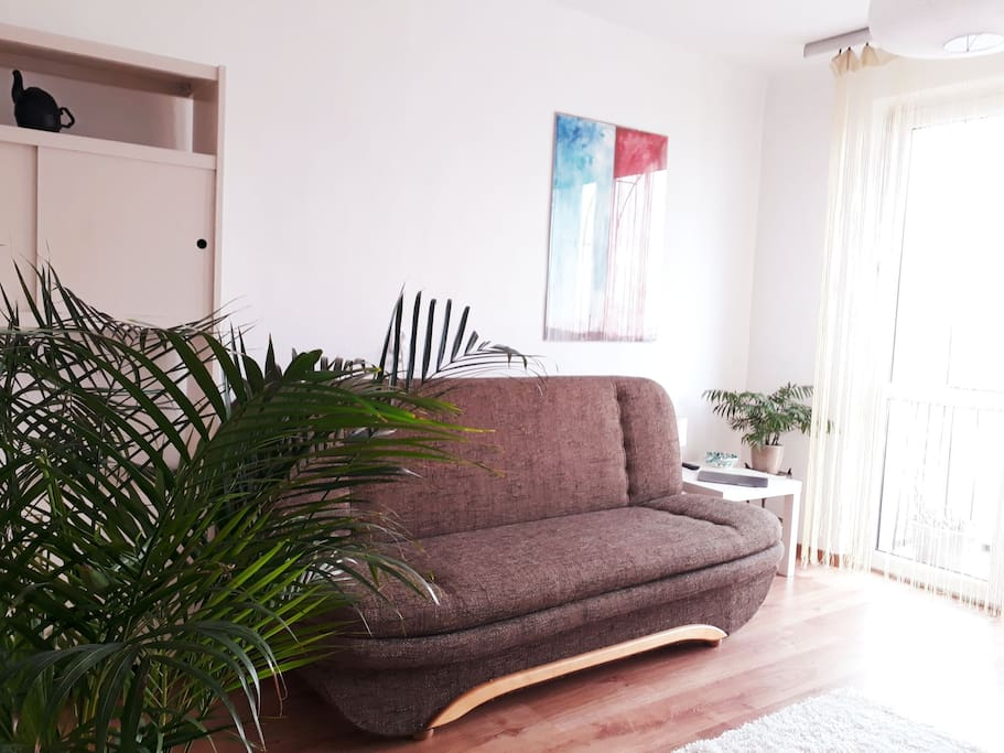 Living room with sofa bed, night table and lamp, TV and working table surrounded by plants.