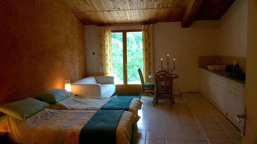 Rural studio with magnificent views - Sougraigne - Appartement