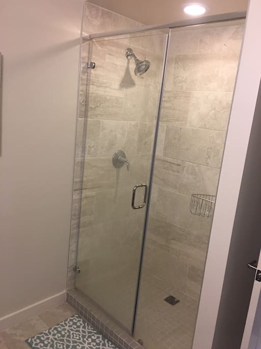 Shower system with different functions