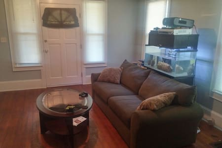 Cozy couch for Concert crashers - Atlanta - House