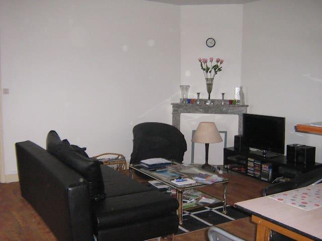 Agréable T3 de 80 m2 avec terrasse à Albi - Albi - Apartment