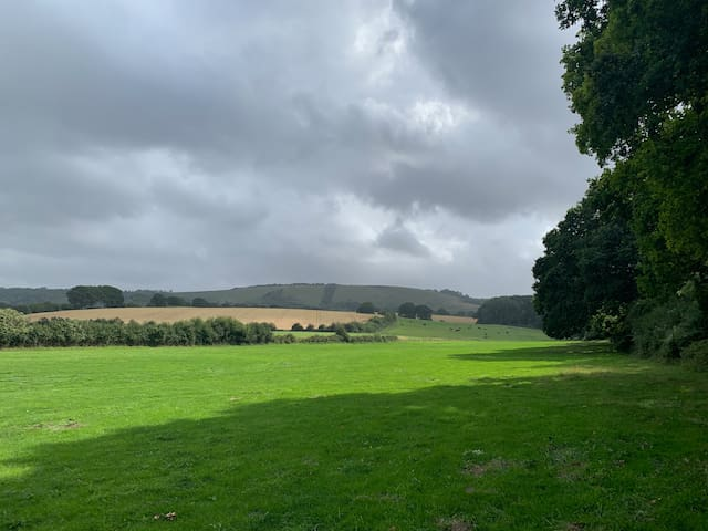 Southdowns Camping