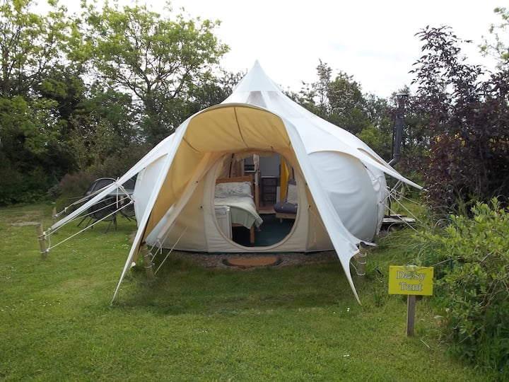 Daisy Tent