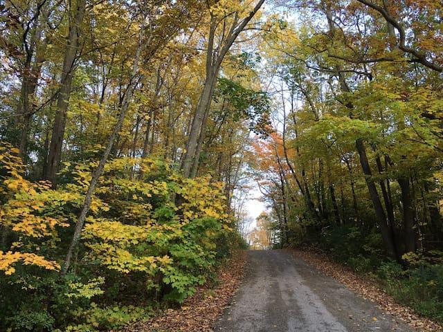The beautiful drive in