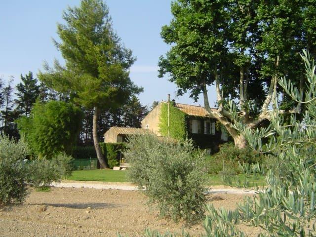 Mas Gran Cabano - Saint-Rémy-de-Provence