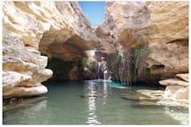 Sumergete también en las aguas de la Murcia interior...explórala  y disfrútala !!! A tope !!!