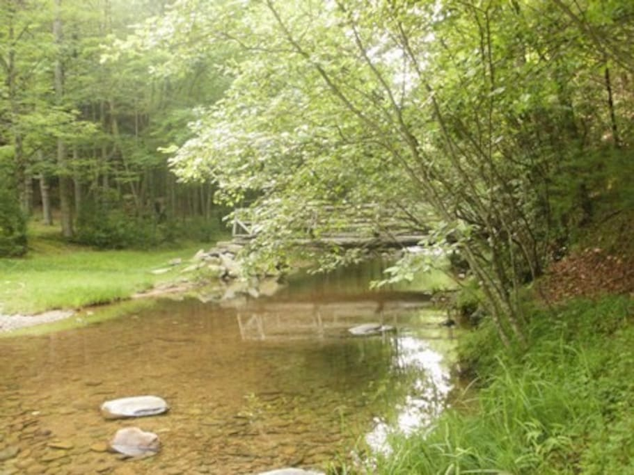 This is the Stream and Picnic Area with fire pits, picnic tables, grills