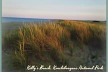 Kelly's beach