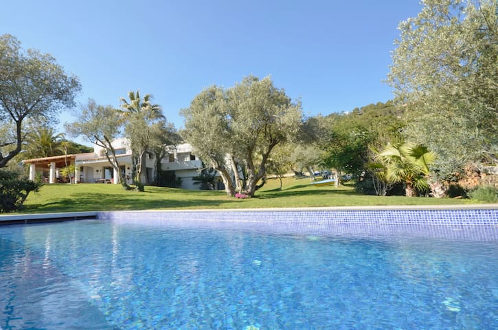 In an exclusive and privileged environment, surrounded by olive trees and a few meters fro