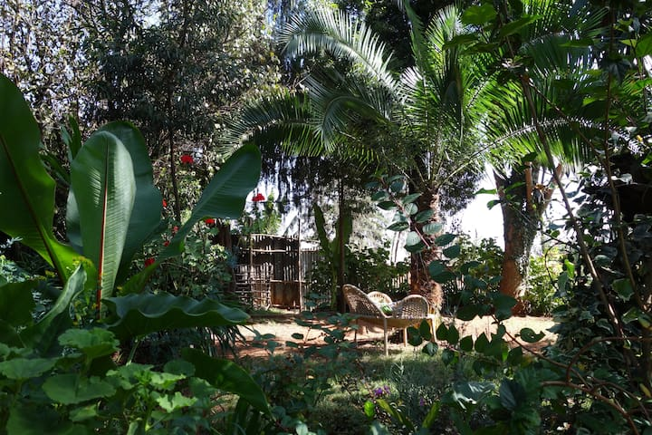 garden (in the dry season) where you can relax in a lounge chair